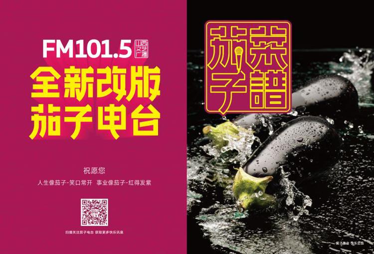 FM101.5全新改版茄子电台